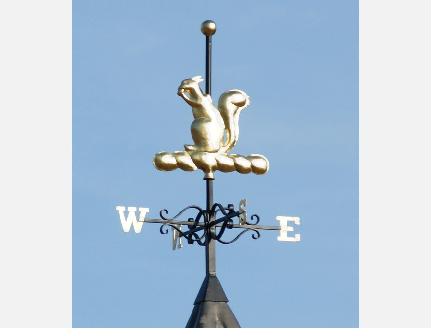 squirrel wind vane